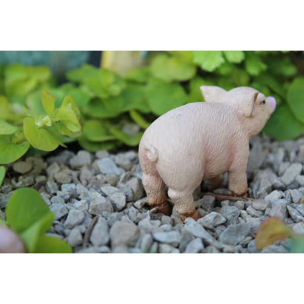 Bacon the Piglet Animal Miniature Barnyard: Fairy Garden Miniatures - Baby Feathers Gift Shop