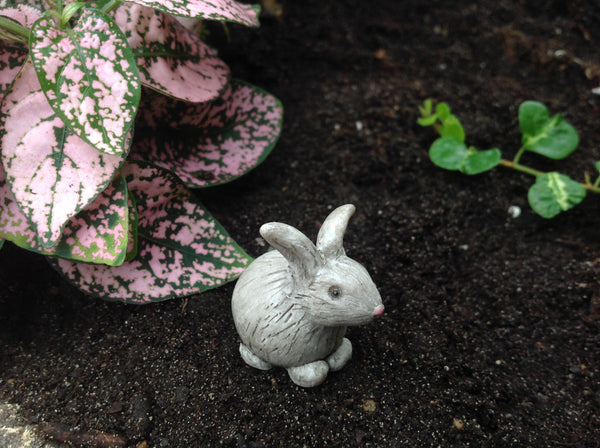 Baxter The Bunny: Fairy Garden Miniature Animal - Baby Feathers Gift Shop - 1