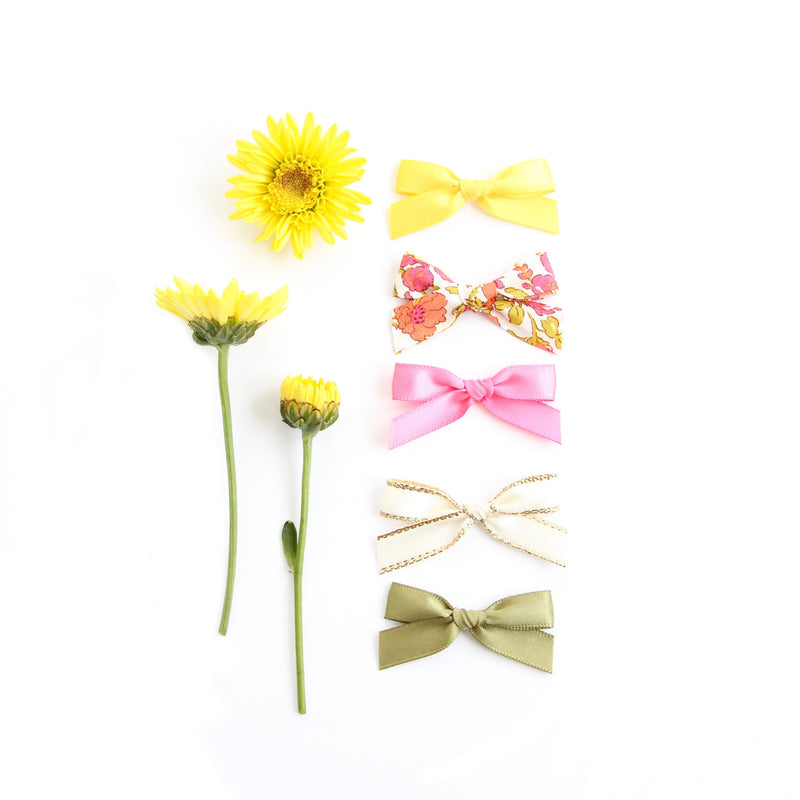 Newborn Bow Set: Wildflower