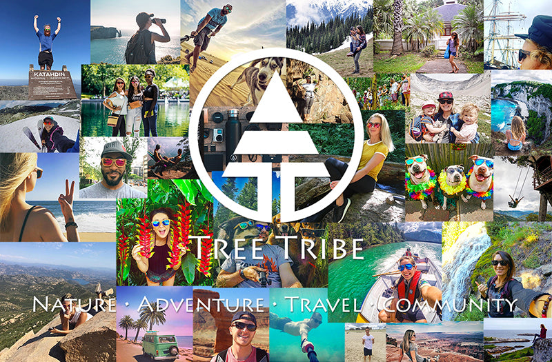 Tree Tribe nature collage