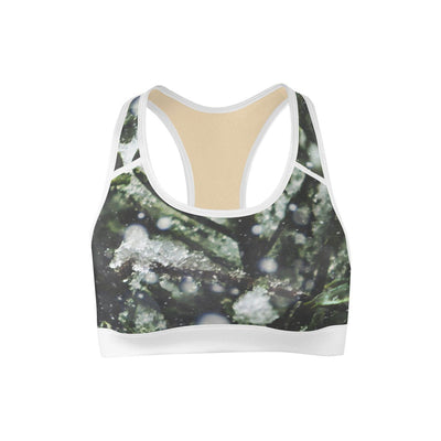 Evergreen Sports Bra  -  Yoga Top