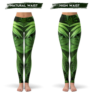 high waist marijuana leaf leggings