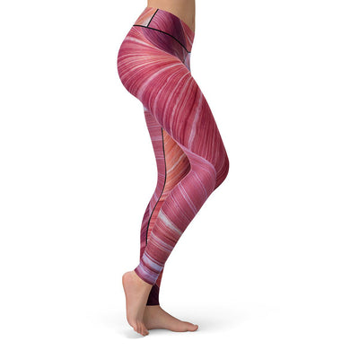 Sandstone Leggings  -  Yoga Pants