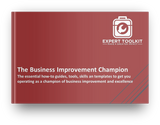 The Business Improvement Champion by Expert Toolkit