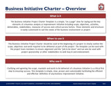 Business Initiative Project Charter Template - Template