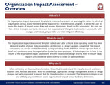 Organization Impact Assessment Template And Guide - Template