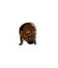 Snoop Pin