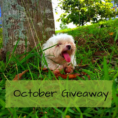 Pet Expo JB Giveaway