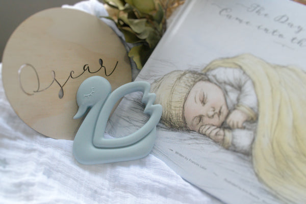 Swan Teether - 7 colour options