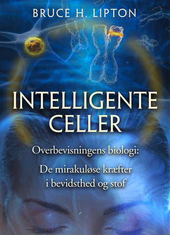 Intelligente Celler - Shop Sund