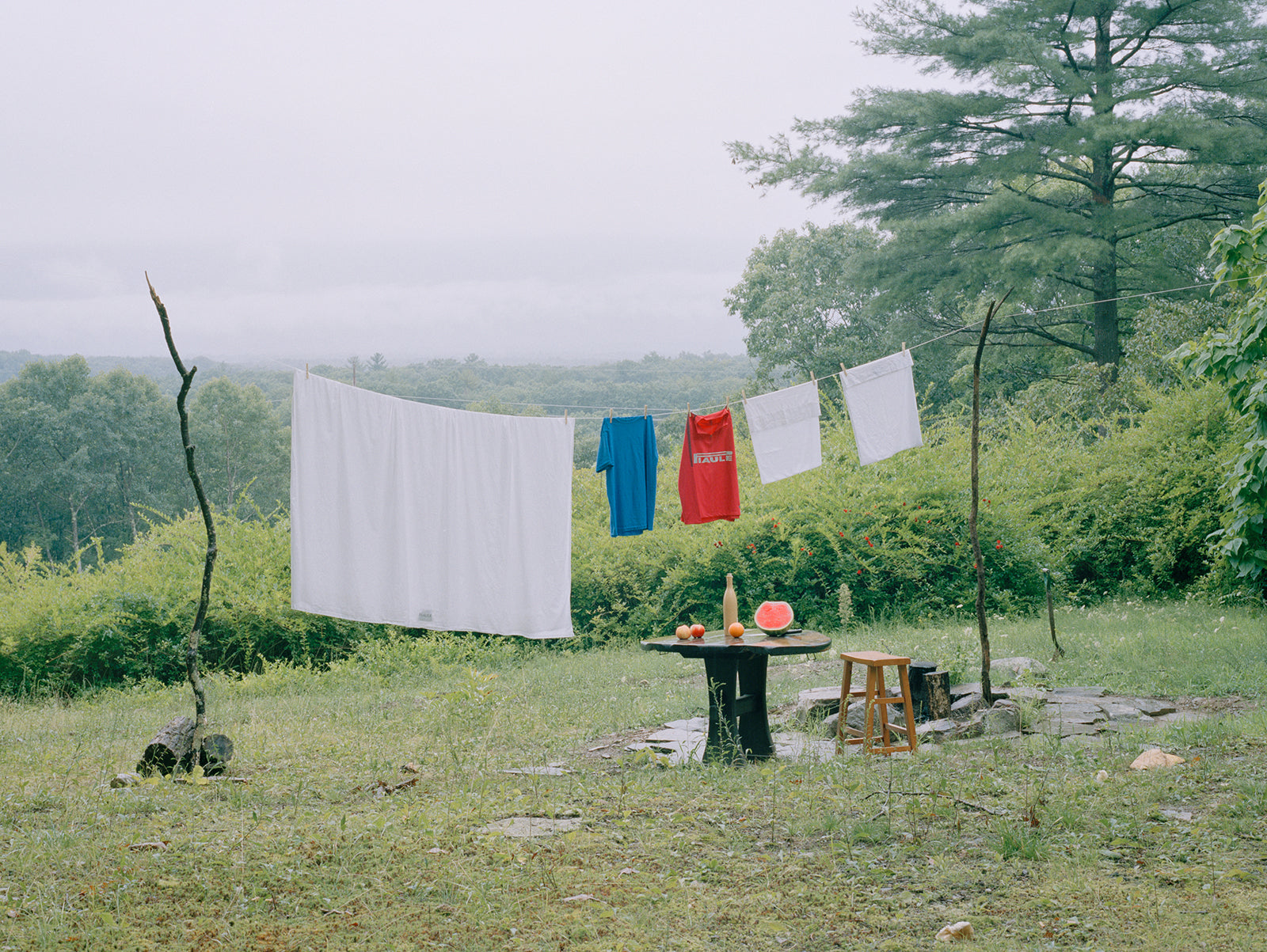 laundry line in nature in upstate new york drying the best white sheets and clothing