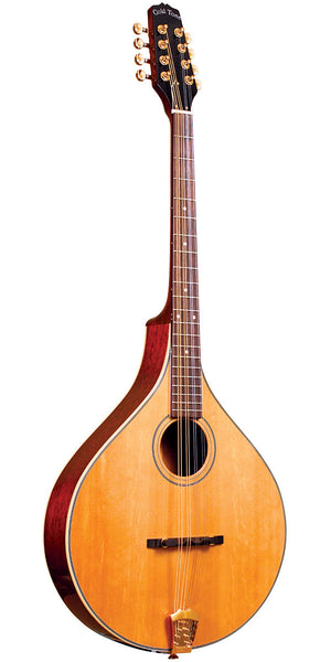 Gold Tone OM-800+ acoustic / electric Octave Mandolin
