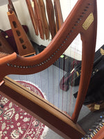 Triplett Eclipse 38-string Folk Harp (used)