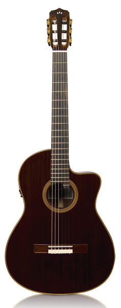 Cordoba Fusion Series 12 Rose acoustic / electric Classical Guitar