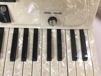 Iorio Accorgan 120-bass Accordion w/mic (used)