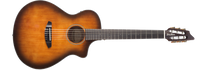 Breedlove Discovery Concert Satin Bourbon Nylon CE Acoustic-Electric Guitar