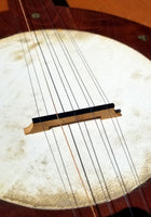 Fretless 5-string Camp Banjo (used)