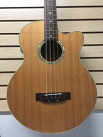 Gold Tone ABG-4 Acoustic-Electric Bass Guitar (used)