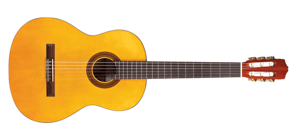 Cordoba Protégé Series C1 Gloss 3/4-Sized Classical Guitar