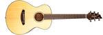 Breedlove Discovery Companion Acoustic Guitar