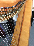 Triplett 34-String Harp (used)