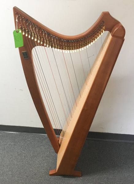 Steen Pacer 34-String Harp (used)