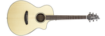 Breedlove Pursuit Exotic Concert CE acoustic / electric Guitar