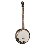 Recording King Madison RK-R35-BR 5-String Resonator Banjo w/Hard Case