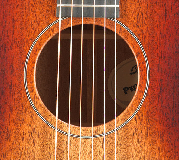 Breedlove Concert Fire Light E Acoustic-Electric Guitar