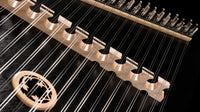 Apprentice Hammered Dulcimer by Dusty Strings