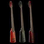 NS Design WAV4c 4-String Omni Bass