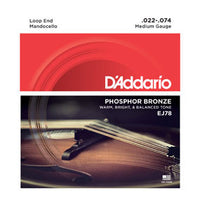 D'Addario Phosphor Bronze Mandocello String Set