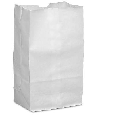 "3LB White Grocery Bag 4.75""x 8.81""x 2.8' (Case of 500)"