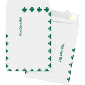 Business Source DuPoint Tyvek Catalog Envelopes (Box of  )