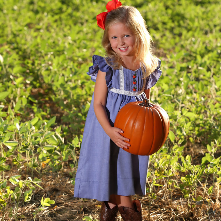 Girls Chambray Blue Dress with Flutter Sleeves, Lace Trim, and Pumpkins