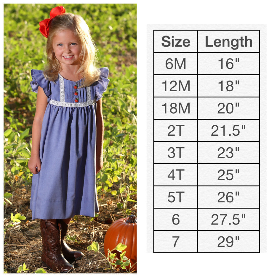Chambray Pumpkin Flutter Dress