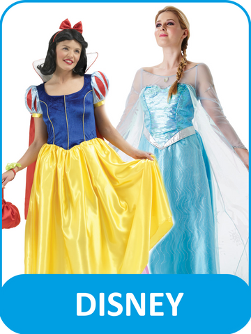 Women's Adult Disney Fancy Dress Costumes