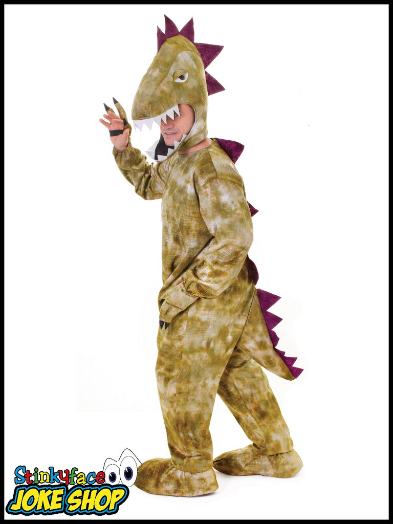 Dinosaur Big Head Fancy Dress Costume
