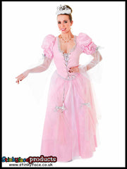 Fairy Tale Princess Fancy Dress Costume
