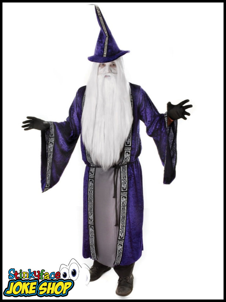 Wizard Merlin Fancy Dress Adult Costume
