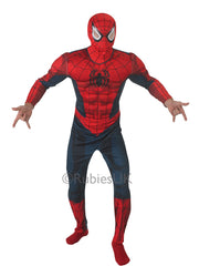 Spiderman Deluxe Fancy Dress Costume