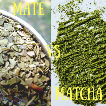 Matcha vs. Mate
