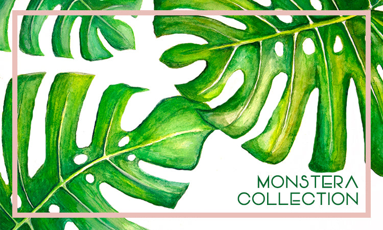 Monstera Collection by Hawaii Jan Tetsutani