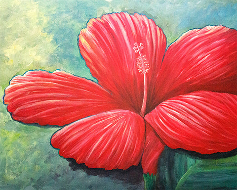 'Red Hibiscus' Art Print