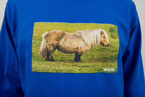 Pony Long Sleeve - Royal Blue