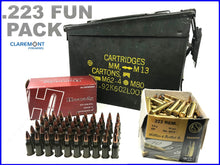 FUN BOX 223 - 150RND inc AMMO CAN