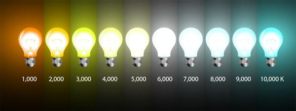 colour temperature of bulbs