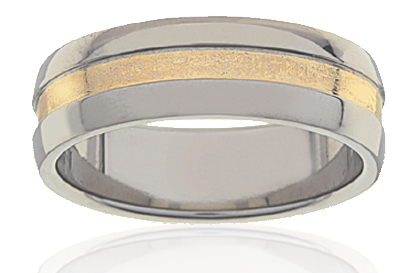 Mens Titanium & Gold Ring