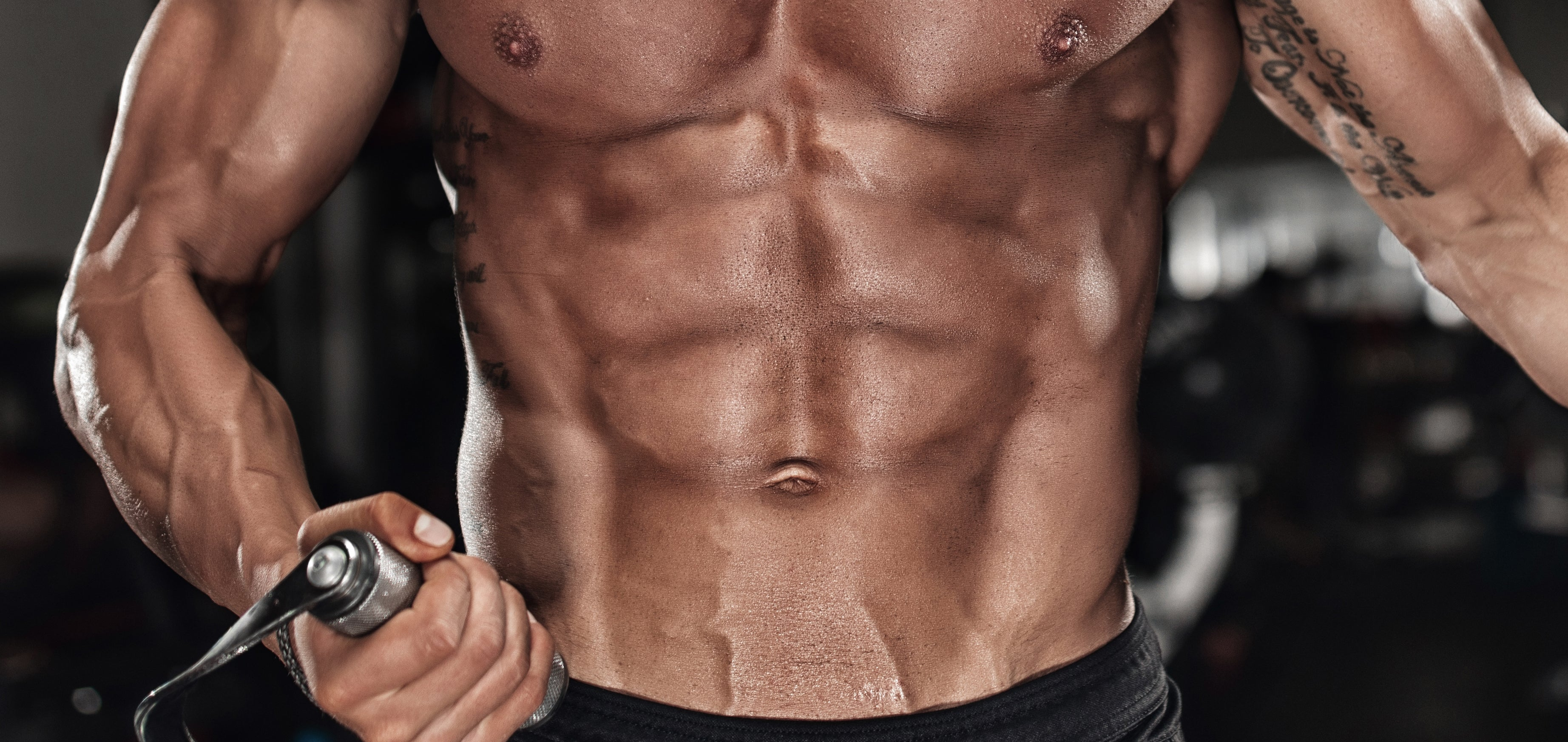 Definitive Guide to Six Pack Abs – Scitec Nutrition USA