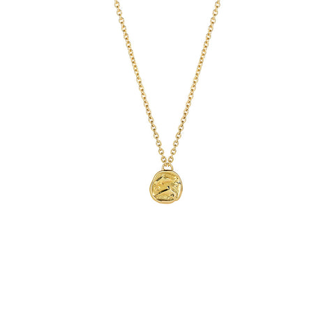 Delphus Gold Necklace